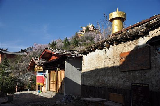 建在龟山顶的大佛寺