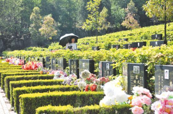 金宝山墓园内秩序井然。