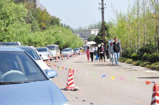 扫墓的车辆排成了长队。