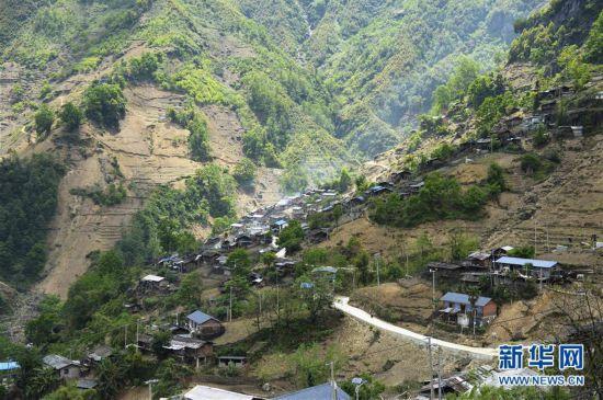 泸水市洛本卓乡的金满村。
