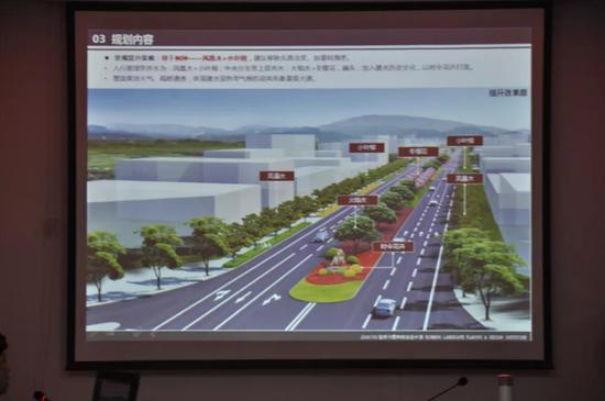 重要城市道路绿化景观提升导则效果图