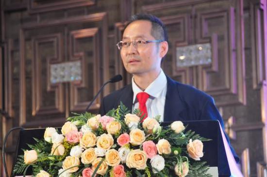 联合国南南合作专家王学平先生发言