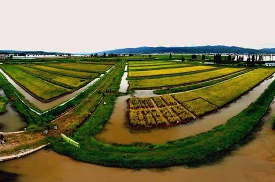 10月3日到渔乐谷摸鱼 感受农耕乐趣