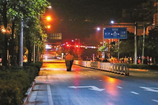 """(野生亚洲象在普洱市区悠闲地""""溜达""""。 吕禾 摄)"""
