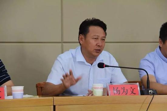 (县委常委、宣传部部长杨为文讲话)
