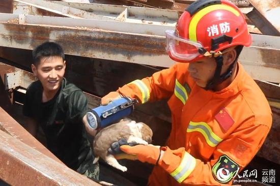 消防员救出小奶狗 供图