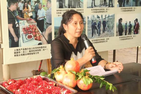 ▲县农科局高级园艺师培训石榴种植技术