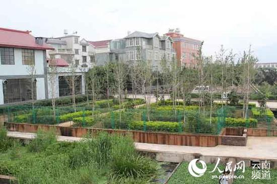 春和街道小白井村统规联建后的环境