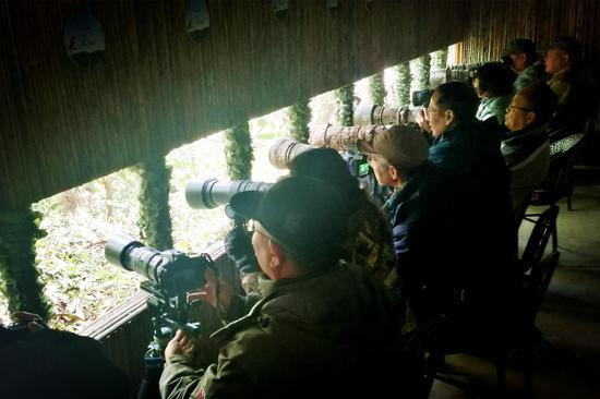 鸟塘拍摄现场(王娅男/摄)