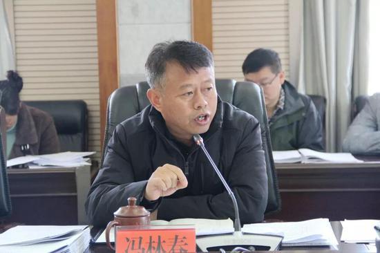 县委副书记、县长冯林春讲话