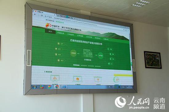 华坪芒果大数据平台界面。(人民网 符皓 摄)