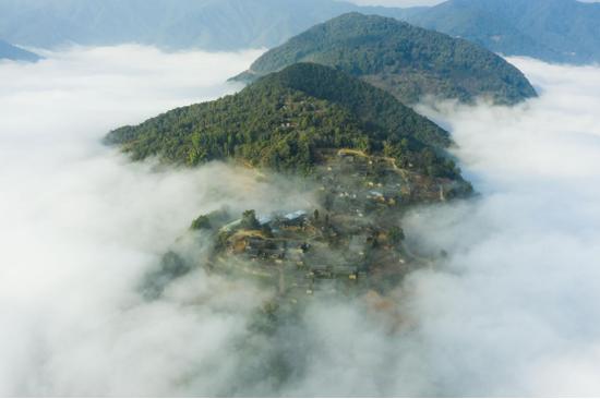 高黎贡山山顶一号咖啡庄园