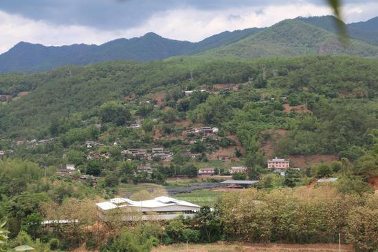 民江村母猪繁育场及有机肥厂