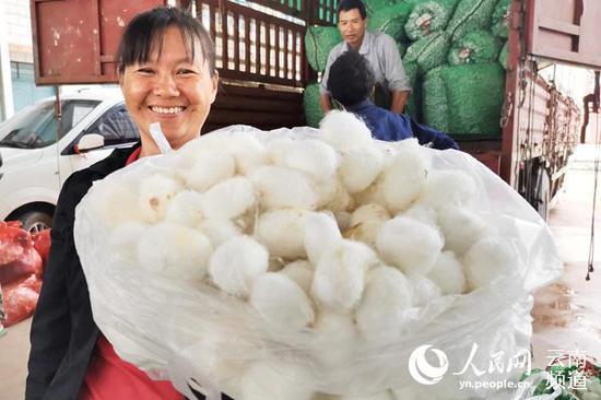 自明珠在恩永村村委会蚕茧收购点卖出今年自家产的第三批蚕茧。(人民网 符皓 摄)