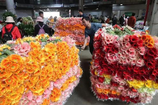 在斗南花卉大卖场,花农正在整理上市交易的非洲菊。杨峥 摄