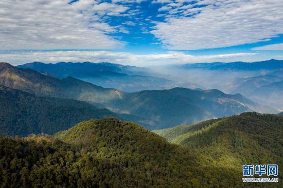 """这里是""""动物王国""""""""植物王国""""""""物种基因库"""";这里是中国重要的生物多样性宝库和西南生态安全屏障……七彩云南,山青水绿,地美天蓝,是无数人的""""诗和远方""""。"""