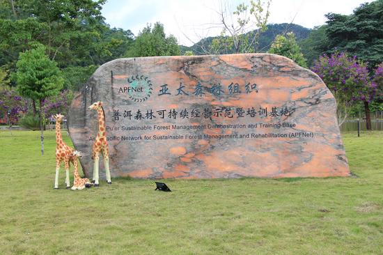 亚太森林组织普洱森林可持续经营示范暨培训基地