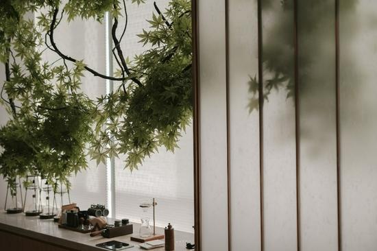 图:咖啡厅一角 醇香咖啡搭配一抹翠意