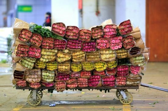 昆明斗南花卉市场,等待交易的一整车玫瑰(摄于2019年3月1日)。(丁凝 摄)