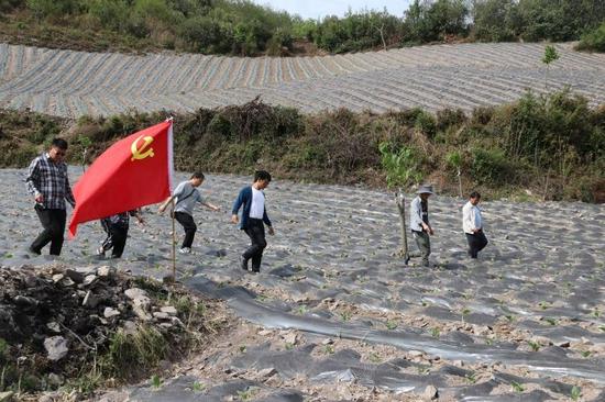 """新华乡:""""六微""""模式激活基层党建新活力"""