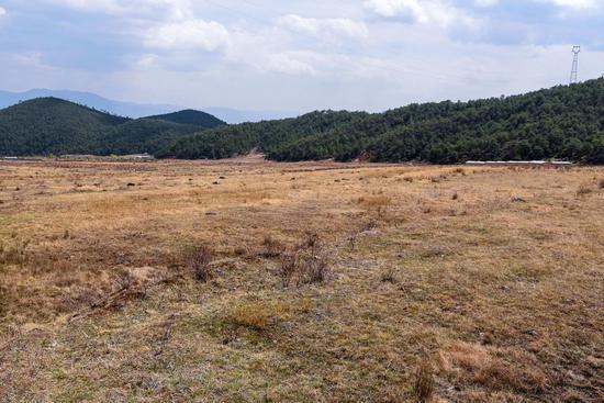 慌了近20年的玉龙村乌嘴坪撂荒地。