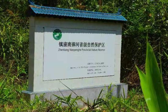 探访镇康县南捧河省级自然保护区:国家一级保护植物藤枣在这