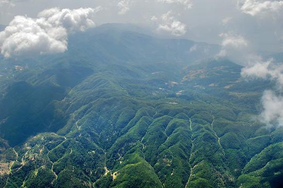 施甸县善洲林场全景