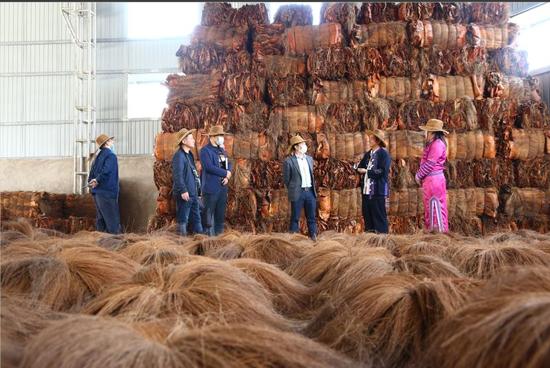 镇沅:民族团结大发展 领着农民奔小康