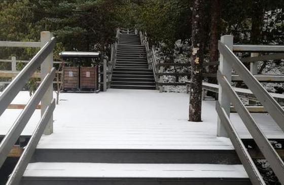 惊喜|昆明轿子雪山下雪啦!雪景将持续到明年二三月