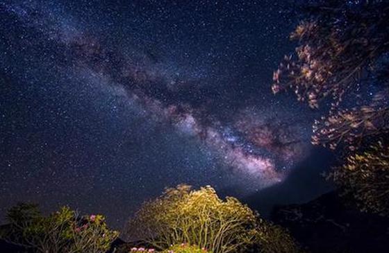 高清图丨迪庆:花海与星空 与你只是想见的距离