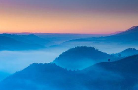旅游丨普洱景迈山:一个去了就不想走的地方