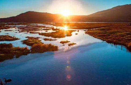 旅行丨鸢尾花开:共赴腾冲北海湿地的紫色约会