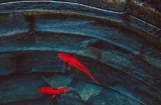 高清图丨建水古井:古城儒家文化兴盛的印证