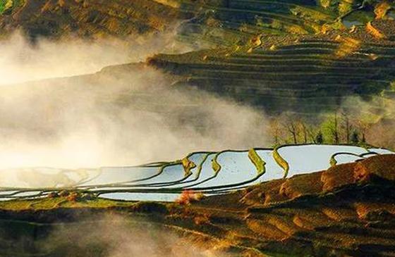 高清图丨面朝哈尼梯田 过起云上仙居的日子