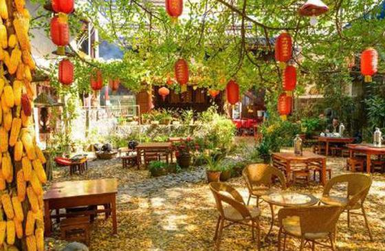 高清图丨腾冲银杏村:秋日树间流转的童话世界