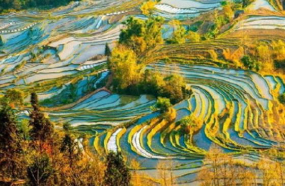旅游丨云南的秋天:一半在天堂 一半在人间