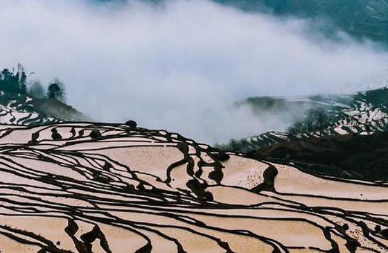 高清图丨元阳梯田 被云雾掩映得扑朔迷离如诗画境