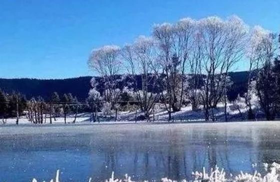 你想看的冰雪奇缘 尽在冬天的香格里拉