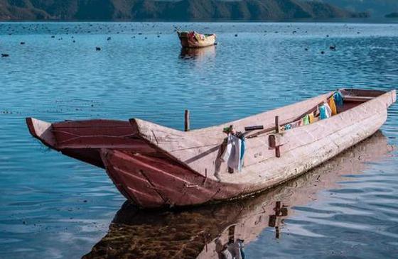 高清图丨冬天的泸沽湖 与成群结队的海鸥相映成趣