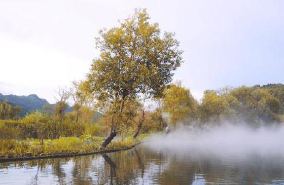 高清图丨写意和顺:一路沿溪花复水,数家深树藏碧楼