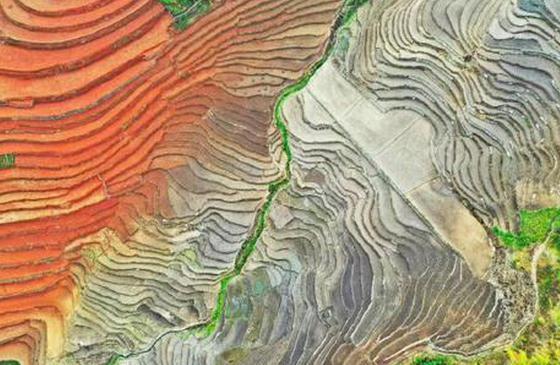 高清图丨云南西盟:夏之初的农耕之美,田园之美