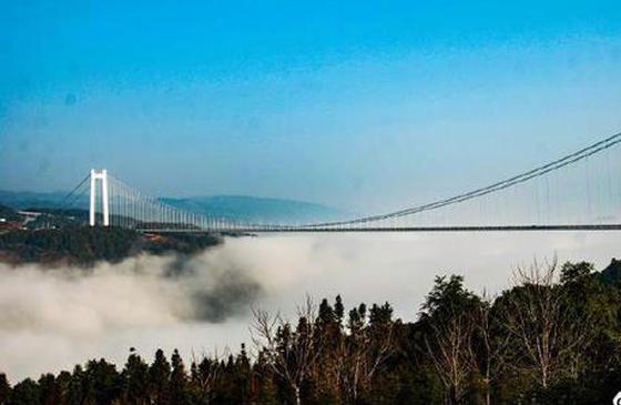 高清图丨大写的美!雨雾中的龙江特大桥美如画