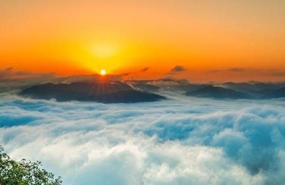 高清图丨宁洱:普洱山迎来今年首次云海 宛如仙境