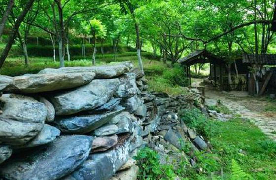 高清圖丨臨滄鳳慶古墨村:林梢煙似帶,村外水如環