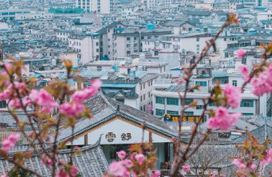 高清图丨丽江古镇情怀里 藏着一个诗画烟笼人家