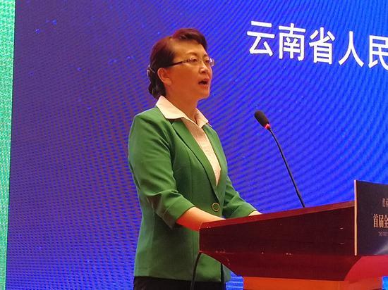 云南省人民政府副省长、民进云南省委主委李玛琳致辞