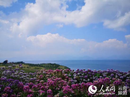 远眺抚仙湖