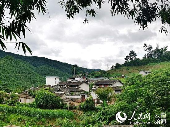 发展绿色生态产业的旧寨风景美如画。(人民网 刘怡 摄)