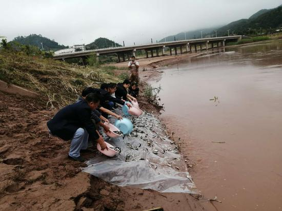 镇沅多举措保护水生野生动物 改善水域生态环境