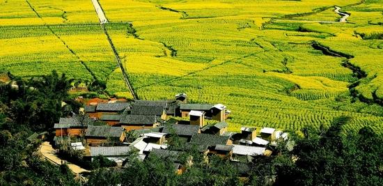 临沧美丽乡村